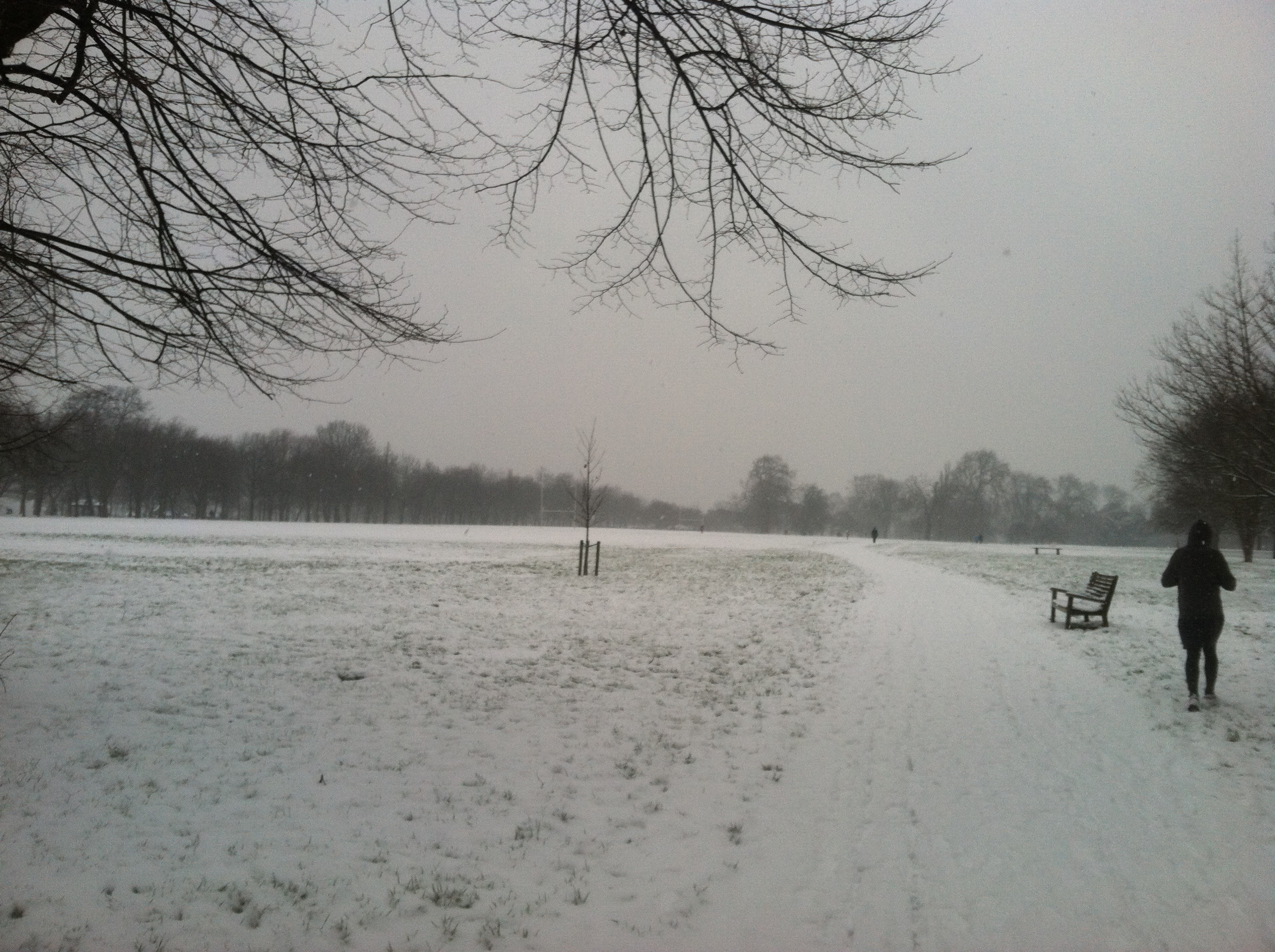 I arrived in London for a business trip to snow. This is Regents Park blanketed in about an inch of fluffy white.